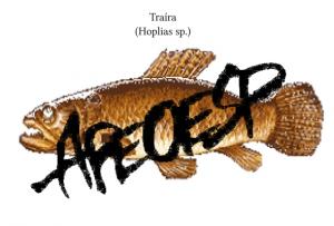 apeoesptraira1