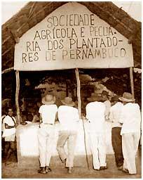 A POLOP, tal como o POR trotskista, aproximou-se das Ligas Camponesas e ajudou a organizá-las